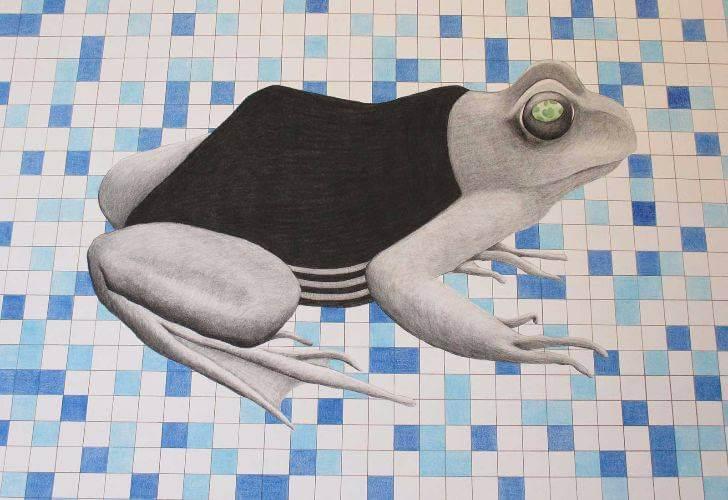 portfolio item Wilma Stegeman met de titel: Kikker