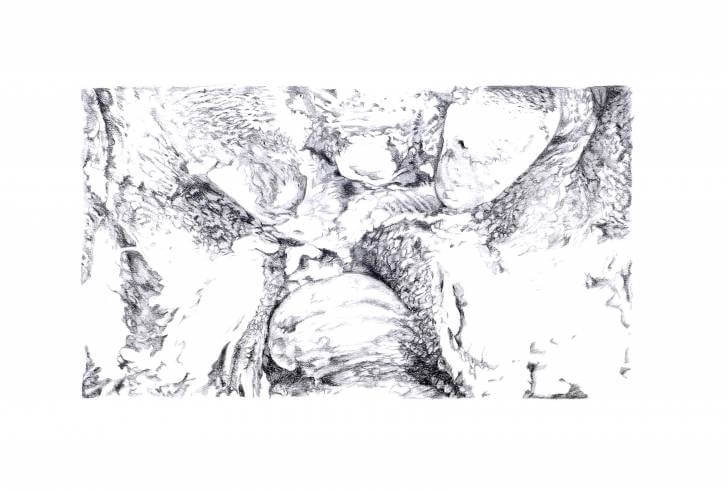 portfolio item Wilma Stegeman met de titel: Pencil drawing IV