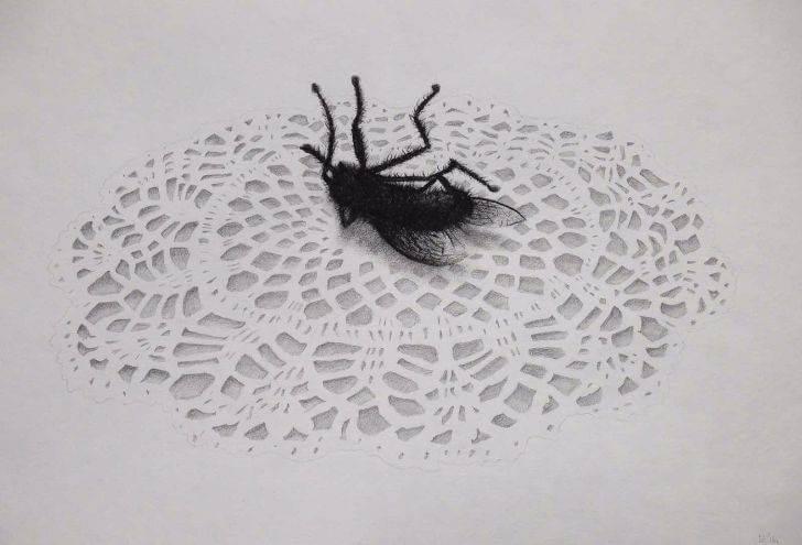 portfolio item Wilma Stegeman met de titel: Fly