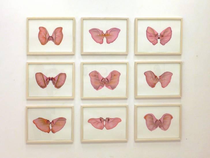 portfolio item Wilma Stegeman met de titel: Pink Butterflies